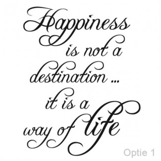 Happiness is not a ...